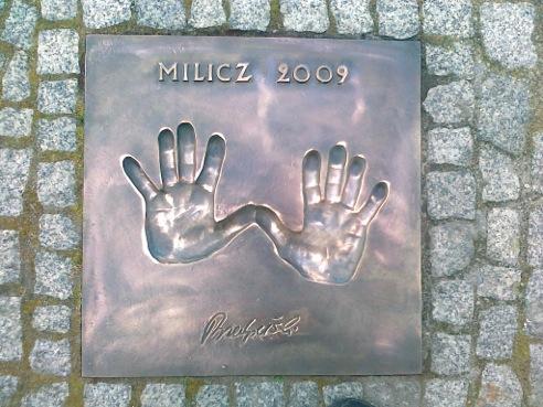 31 - PRZEDPELSKI M (2009)