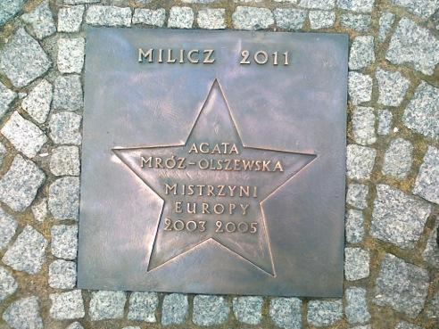 38 - MROZ-OLSZEWSKA A (2011)1
