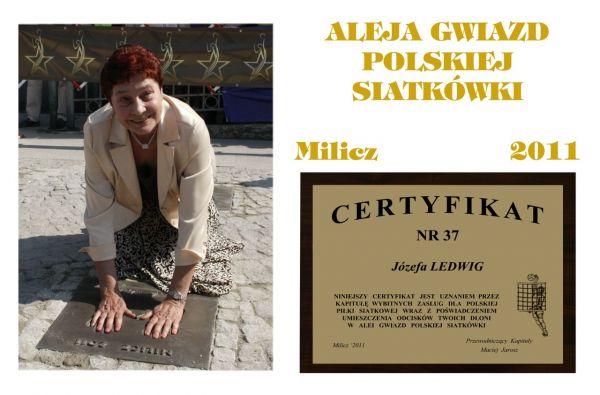 images-stories-Sylwetki-37 - LEDWIG-600x395