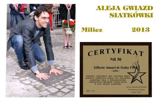 images-stories-Sylwetki-50_certyfikat_giba-600x395